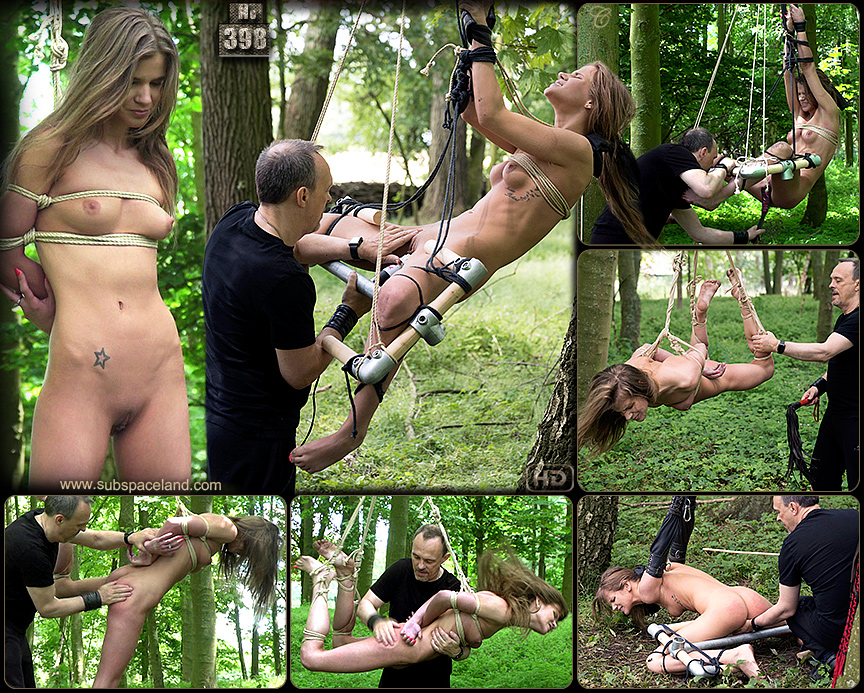 punishment-in-the-forest