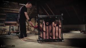 Slaves in a box