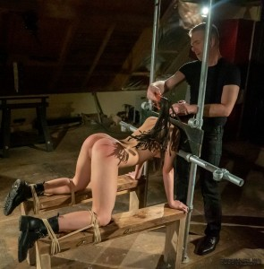 immobilized slave